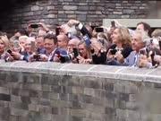 萌!赴荷大熊猫首次与公众见面 被静电打到萌化众人