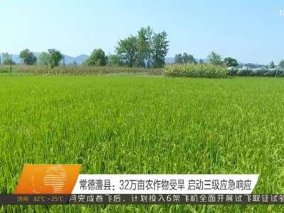 湖南51个县市区受旱 农作物受旱面积234.3万亩
