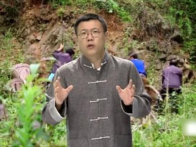 [视频]辛识平:习近平贡献消除贫困的中国方案