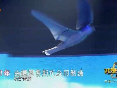 [视频]德国仿生鸟飞起来和真鸟一模一样 张大大惊呆了!