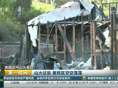 [视频]美国加州山火蔓延:记者探访被山火焚毁的房屋