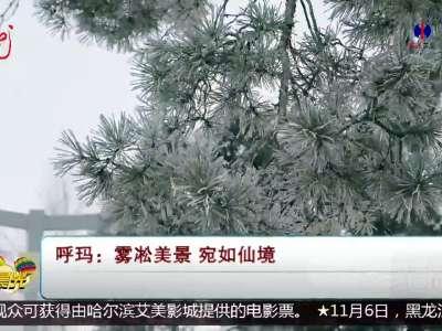 [视频]呼玛 雾凇美景 宛如仙境