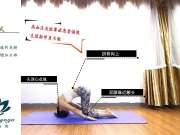 深圳学瑜伽多少学费【罗曼瑜伽】