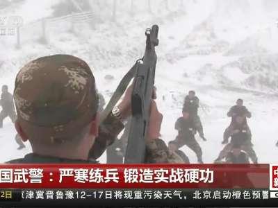 [视频]中国武警:严寒练兵 锻造实战硬功