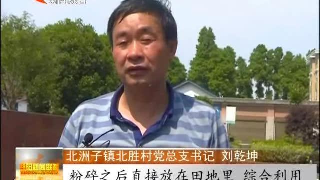 秀美大通湖:大通湖区北洲子镇:禁烧秸秆 改善空气质量
