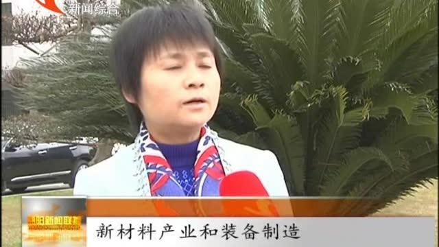 陈静彬:突出园区 抓好重点 实现经济发展新跨越