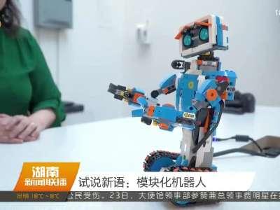 试说新语:模块化机器人