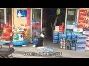犬道文化第五期初级训犬师实操考试视频/山西太原——胡静