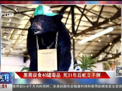 [视频]黑熊误食40罐毒品 死31年后屹立不倒
