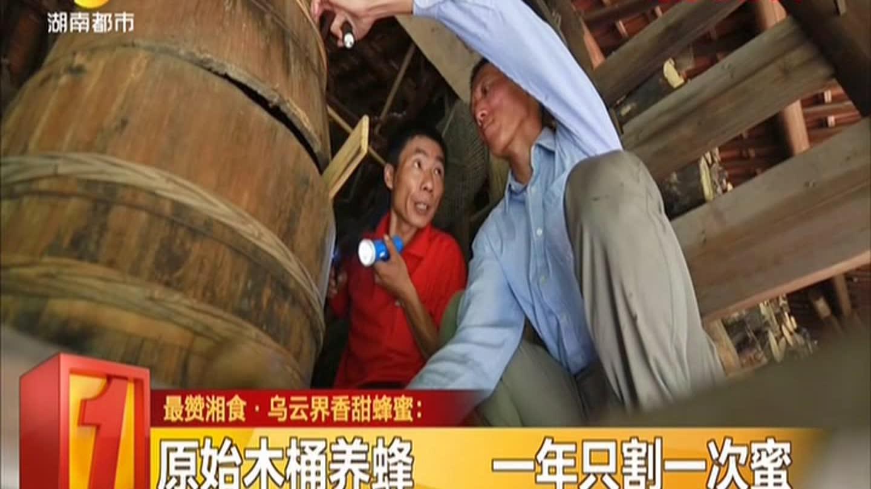 木桶养蜂技术_视频在线观看-爱奇艺搜索