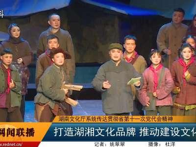 湖南文化厅系统传达贯彻省第十一次党代会精神