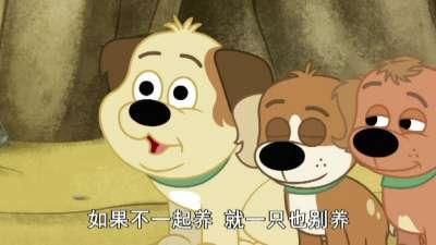 小狗邦德09