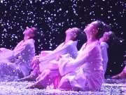 2016青年舞蹈人才培育计划《红楼无梦》
