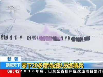 [视频]新疆:零下20多度特战队员练精兵