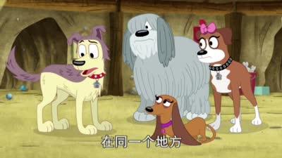 小狗邦德36