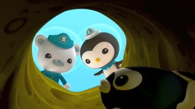 海底小纵队第四季08海底小纵队与鳗鳚