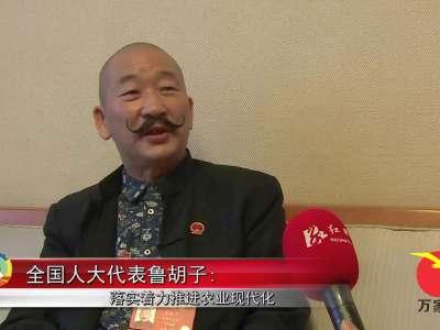 全国人大代表鲁胡子:落实着力推进农业现代化