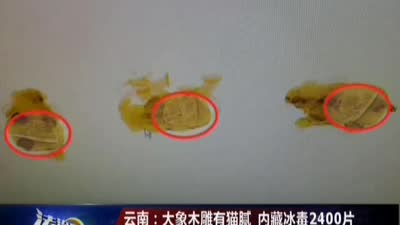 云南:大象木雕有猫腻 内藏冰毒2400片