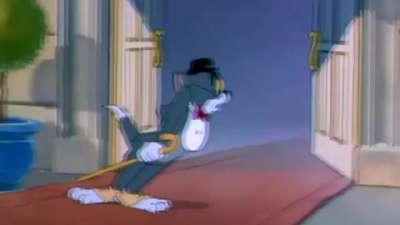 猫和老鼠38