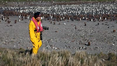 穿过海豹滩 就到了王企鹅的家