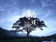 《舌尖上的中国2》20140523:秘境