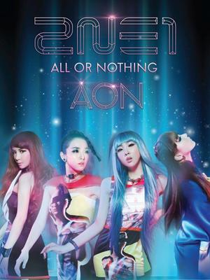 2NE1 世界巡演日本站 ~ALL OR NOTHING~