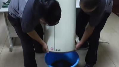 热水器里藏污纳垢的地方 自制养胃通便的酸奶