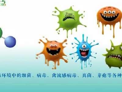 气触媒除甲醛功能篇(三)快速杀灭各种细菌