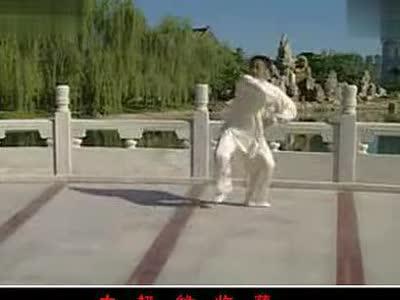 陈式56式太极拳教学0及教程v教学李德印变凤凰菜鸟电脑音乐全套图片