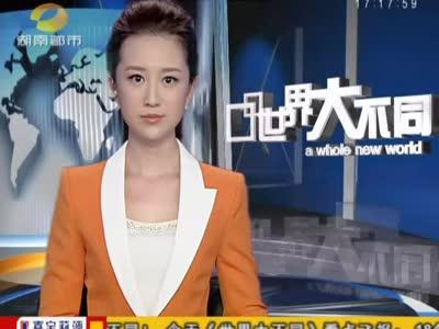美女翻译惊魂