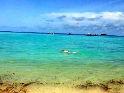 4水屋蝶泳自由泳马尔代夫卡尼岛club