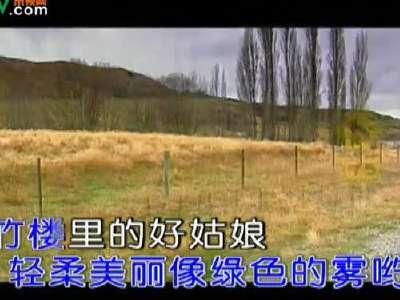 关牧村 月光下的凤尾竹