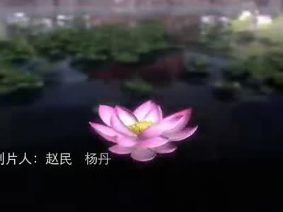 千年寻主题曲 千与千寻主题曲钢琴谱 冰雪奇缘主题曲简谱