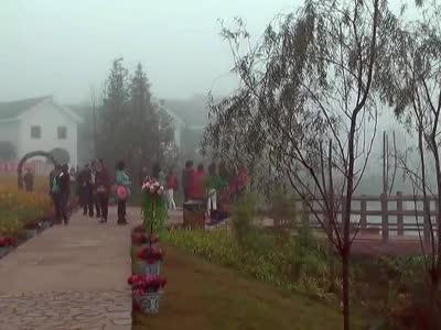 重庆中老年结伴同行群游 铜梁花海图片