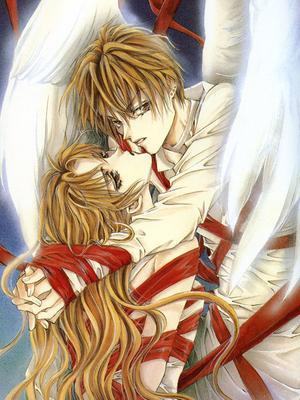 天使禁獵區